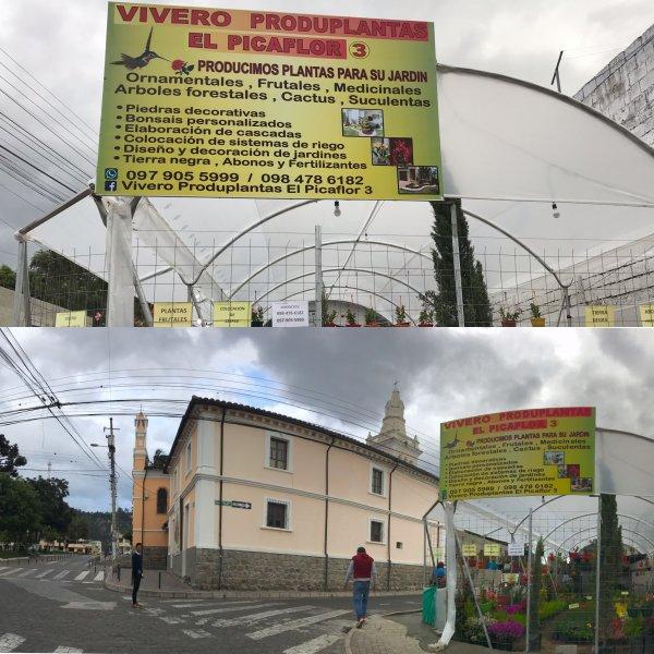 Vivero Produplantas el Picaflor tres