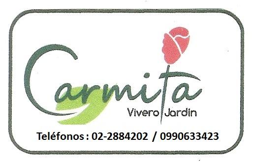 Plantas Carmita