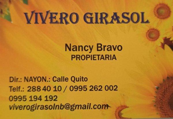 Vivero Girasol